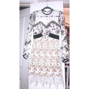 Self-Portrait Swallow floral lace mini dress